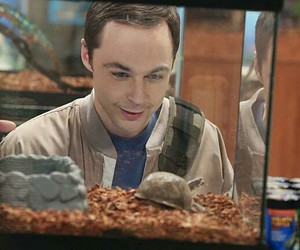 jim, sheldon, and tbbt image