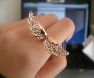 ring, wings, and rings image
