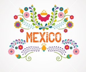 floral, flower, and mexico image