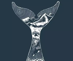 wallpaper and whale image