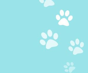 blue, designs, and paw image