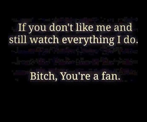 bitch, fan, and quote image
