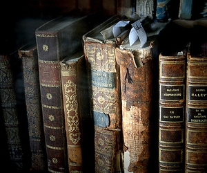 books, decay, and libraries image
