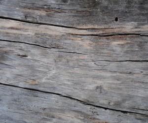 wood and classycgal image