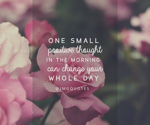 morning, quotes, and rose image