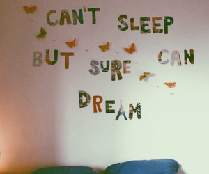 apartment, butterflies, and dreamer image