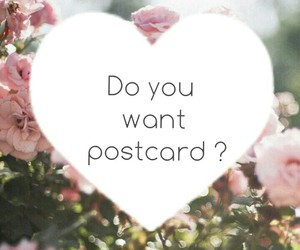 flower, heart, and postcard image