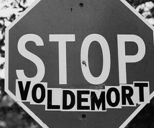 harry potter, stop, and voldemort image