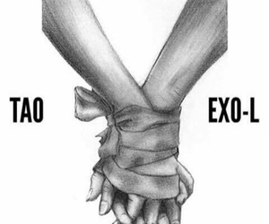tao, exo, and exo-l image