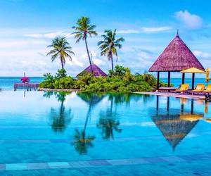 beach and paradise image