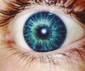 eye and indie image