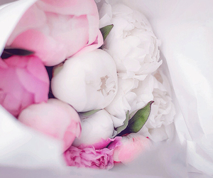 flowers, gift, and luxury image
