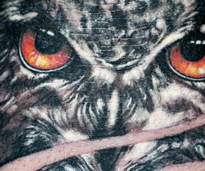 ink, owl, and tattoo image