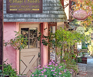 carmel and pink image