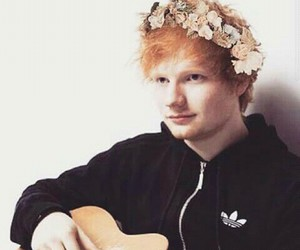 ed, flowers, and ed sheeran image