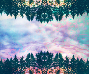 forest, hipster, and tree image