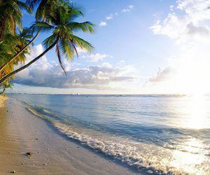 future, travel, and trinidad image