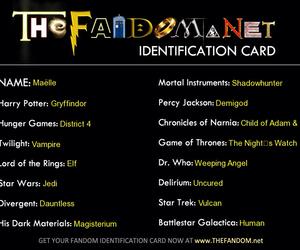 fandom, harry potter, and twilight image