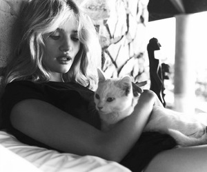 cat, model, and rosie huntington-whiteley image