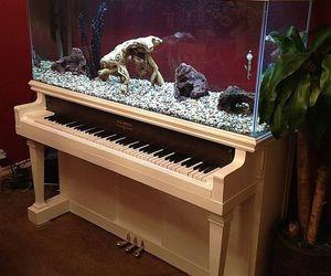aquarium, piano, and art image