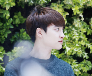 d.o and exo image