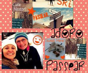 ski, passear, and dogs image