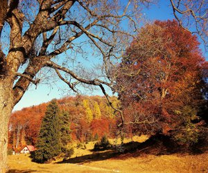 fall, nice, and place image
