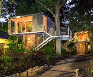 berlin, treehouses, and urban image