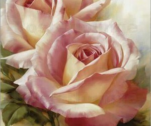 art, pink rose, and colors image