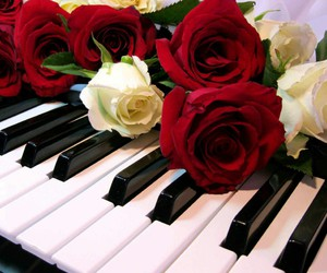 flowers, music, and roses image