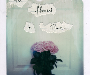 handwriting, jeff buckley, and roses image
