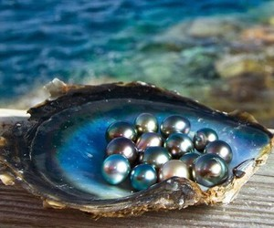 pearls, sea, and blue image