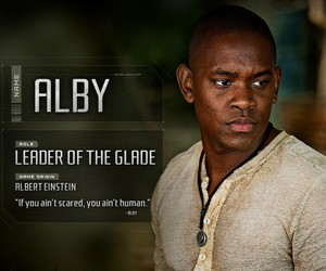 alby, the maze runner, and maze runner image