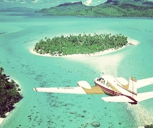 airplane, summer, and travel image