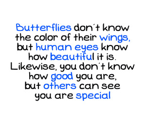 butterfly, quote, and special image