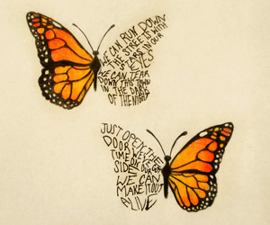 art, butterfly, and song image