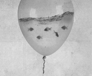 fish, water, and balloons image