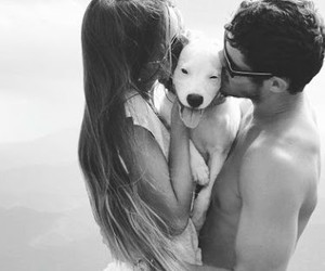 couple, tumblr, and dogs image