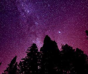 galaxy, sky, and woods image
