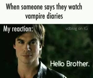 tvd, the vampire diaries, and damon salvatore image