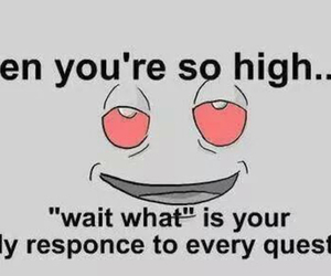 high, stoner, and weed image