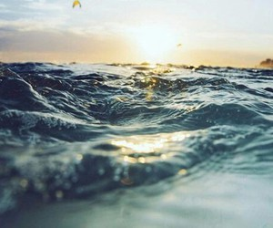ocean, water, and summer image