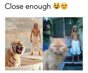 funny, lol, and Life of Pi image