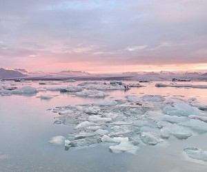 beautiful, heart, and ice image