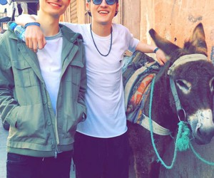 crawford collins, chris collins, and weekly-chris image