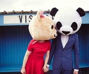 love, panda, and couple image