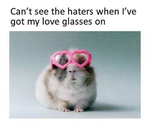 love, funny, and glasses image