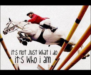 horse, jumping, and love image