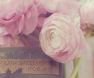 flowers, literature, and pink image