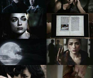 wolf, teen wolf, and allison argent image